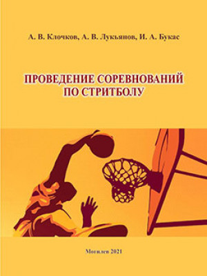 Клочков, А. В. Проведение соревнований по стритболу